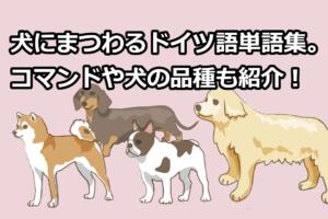 犬にまつわるドイツ語単語集